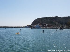 paddle boarders baby beach dana point harbor beach dana point city guide