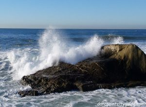 dana point headlands beach dana point city guide
