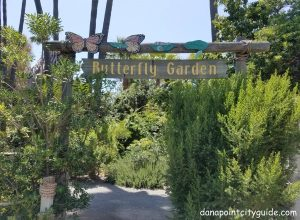 butterfly garden doheny state beach dana point city guide