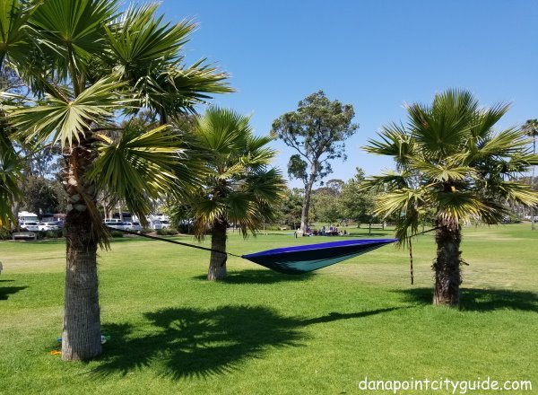 picnic area doheny state beach north dana point city guide